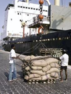 « C'est le résultat des performances enregistrées dans tous les secteurs, des efforts pour accroître la productivité agricole et la compétitivité du port de Cotonou »