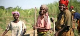 COP22: il faudra entre 20 et 30 milliards $/an sur 15 ans pour financer l'adaptation climatique en Afrique