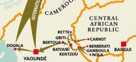 Conflict Diamonds from CAR Entering International Markets via Cameroon