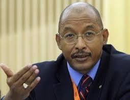 Ibrahim Assane Mayaki, Secrétaire exécutif du NEPAD