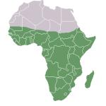 Il urge aux Etats de l'Afrique subsaharienne de proposer un processus d'ajustement ordonné…