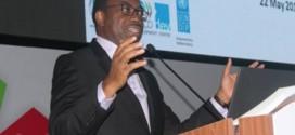 Assemblée générale de l'ONU : «Le charbon n'a plus sa place en Afrique, l'avenir est aux énergies renouvelables», affirme Akinwumi Adesina