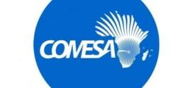 Développement : Le COMESA appelé au développement de l'agriculture pour accroître le commerce intra-régional
