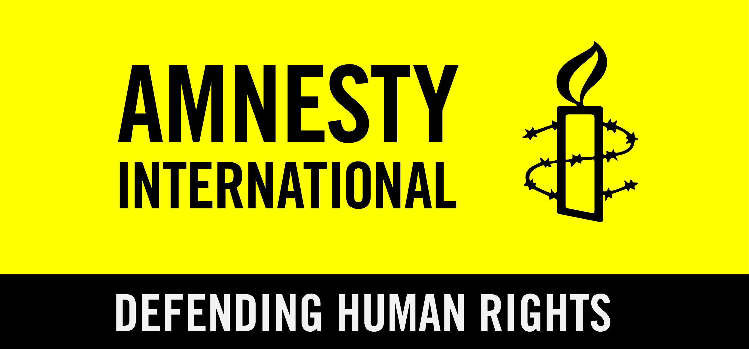 "Résultat de recherche d'images pour ""amnesty international ONG logo"""