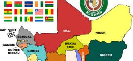 Afrique de l'Ouest / Dans la dynamique de la préparation de la 33ème session du RPCA ! de la semaine du Sahel et de l'Afrique de l'Ouest prévue à Cotonou : Bamako affine résultats provisoires et perspectives alimentaires et nutritionnelles pour Cotonou