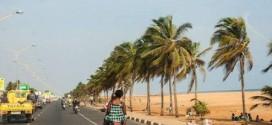 Economie /Togo :  Une croissance plus importante que prévue, portée par la hausse de la production agricole (BCEAO)