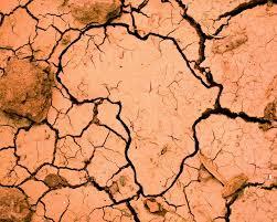 8ème Conférence sur le changement climatique et le développement en AfriqueL'Afrique doit avoir une position unie au Sommet de Septembre 2019