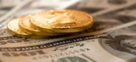 ZONE CFA: La course aux cryptomonnaies d'États est lancée__