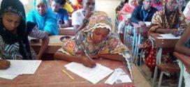 Niger / Aide au Développement:L'UE débloque 34 millions d'euros pour appuyer la formation, la sécurité alimentaire et le développement