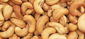 Campagne de commercialisation 2019-2020 des noix de cajou : 325 Fcfa le Kg, c'est le prix d'achat des noix de cajou, interdits de sortie frauduleuse au Bénin