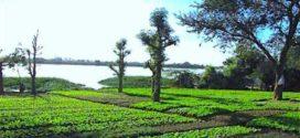 Perception des droits d'enregistrement en matière foncière : Le Gouvernement suspend les droits d'enregistrement de 5%