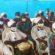 Djidja / Séance de Plaidoyer sur la problématique de l'accès des femmes aux terres agricoles : Sa majesté, Aho Glèlè veut mettre fin à la pratique discriminatoire ancestrale