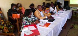 Atelier d'Appropriation et de Lancement du Projet PPDSE : Wildaf Bénin en guerre contre les Violences sexospécifiques basées sur le genre et les Maladie tropicales négligées