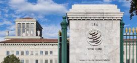 12ème Conférence ministérielle de l'OMC / Commerce et développement : L'intégration des petites économies dans le système commercial sera également au menu des échanges