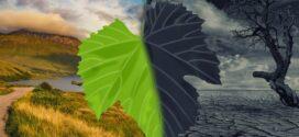 Les changements climatiques : Notre combat à tous (Une tribune co-écrite par les Ministres Abdoulaye BIO TCHANE et José TONATO)